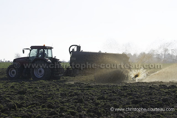 Manure Spreading in Brittany